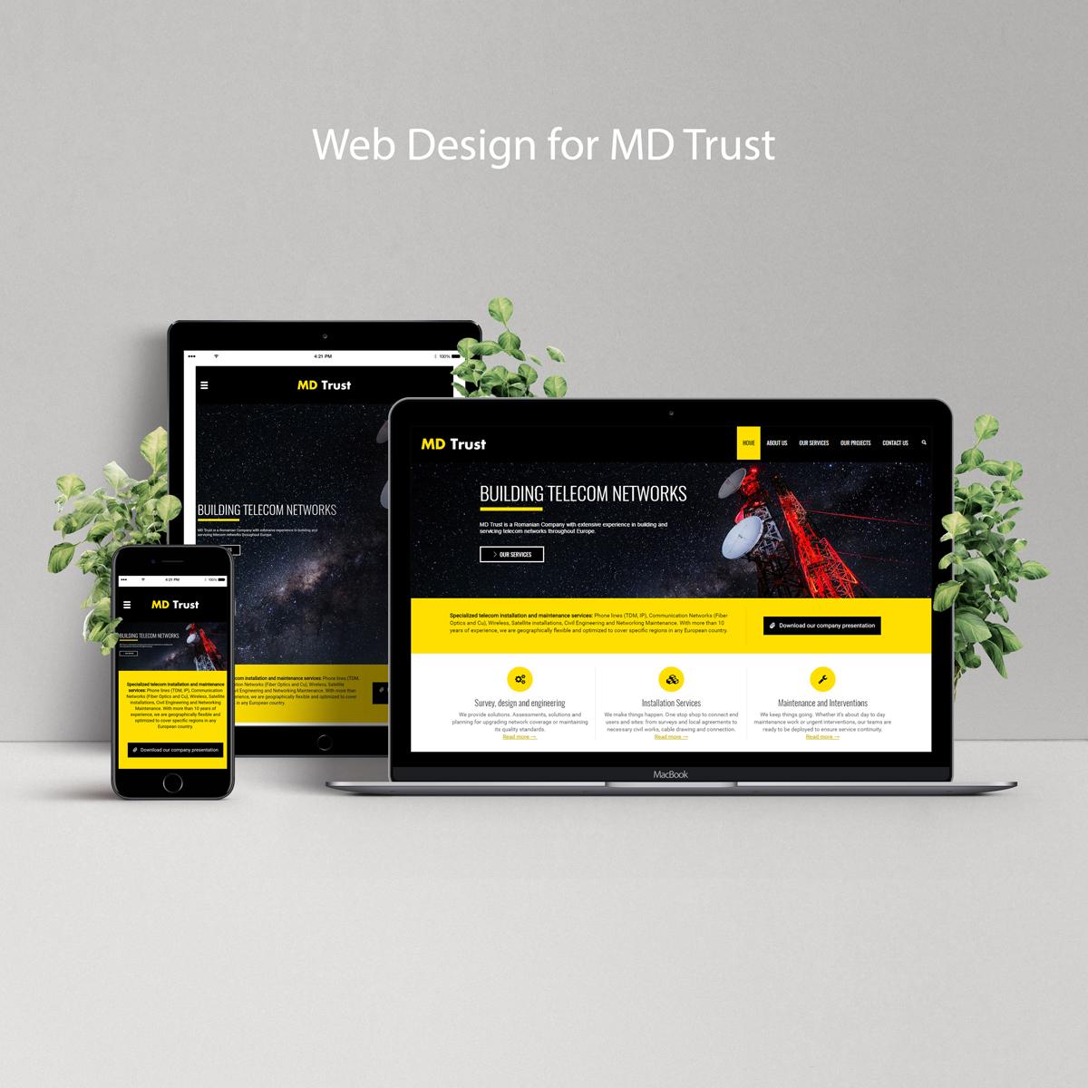 website-pentru-promovarea-internationala-a-serviciilor-md-trust
